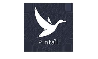 Pintail logo
